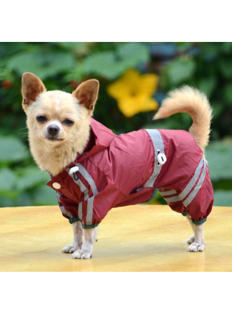 Red raincoat 4-legs size L