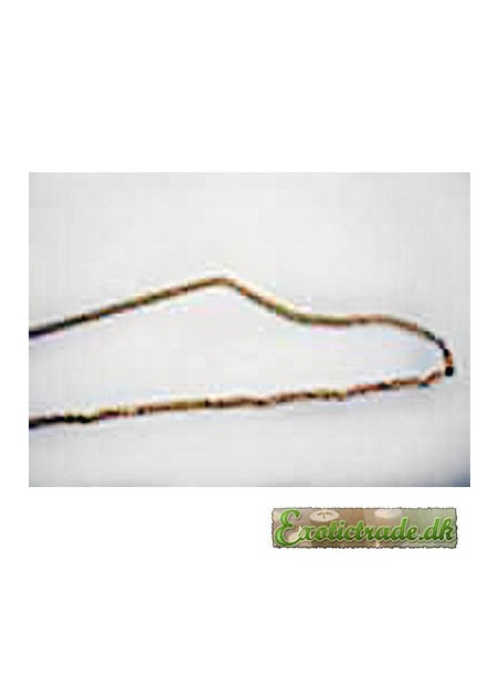 Goldplated necklace 40 cm