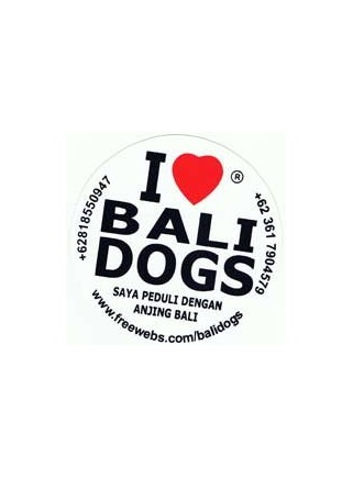 Donation to Bali Dog Shelter
